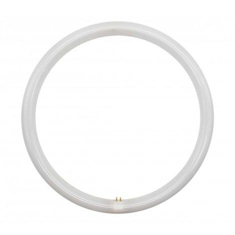 Tubo-de-LED-T9-32W-G10Q